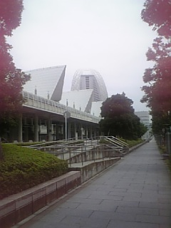 今日は横浜。